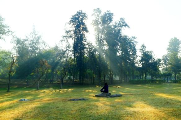 Surya Namaskar 3 (2)