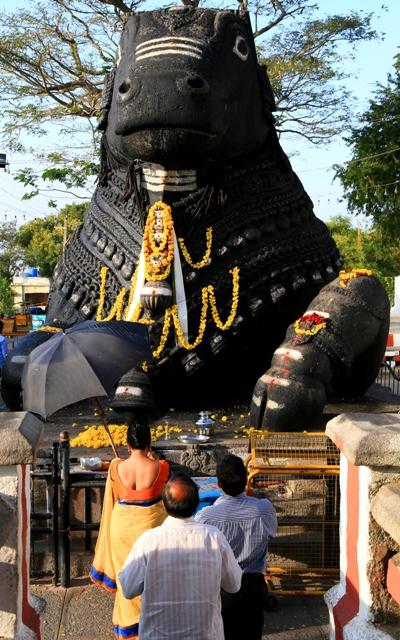 Mysore _20140102_67
